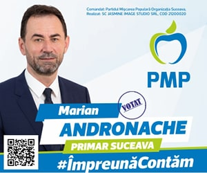 PMP - Marian Andronache