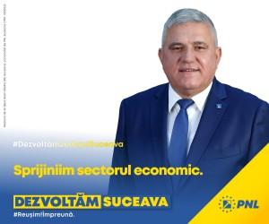 Dumitru Mihalescul - PNL