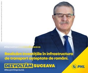 Viorel Seredenciuc - PNL