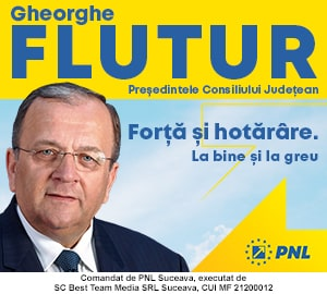 PNL - Gheorghe Flutur