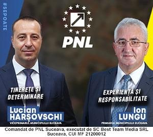 PNL - Ion Lungu - Lucian Harsovschi