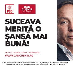 PSD - Dan Cusnir