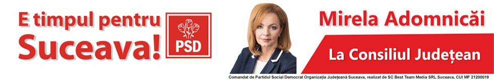 PSD - Mirela Adomnicai