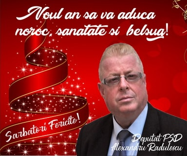 Alexandru Radulescu - deputat PSD