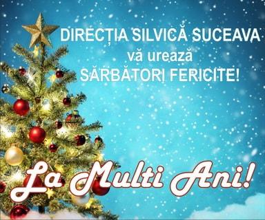 Directia Silvica Suceava